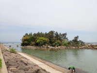 松島 オート キャンプ 場