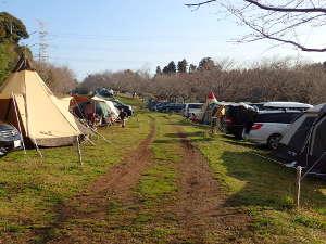 牧場 キャンプ ゆめ