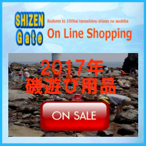 On line Shopping磯遊び用品バナー
